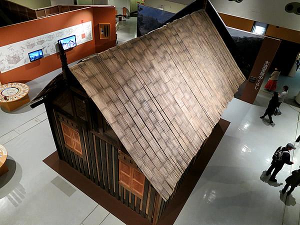 国立民族学博物館、虎竹ヒシギ