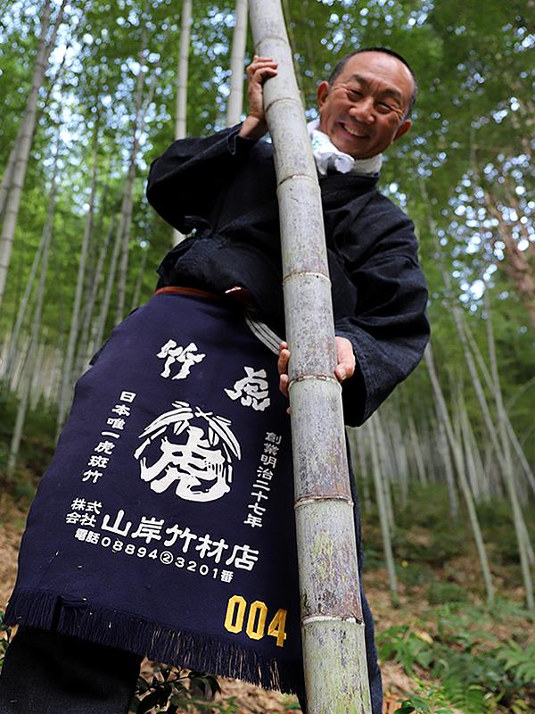 日本唯一の虎竹、竹虎四代目(山岸義浩)