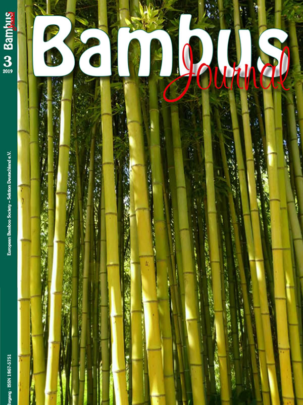 bambus journal
