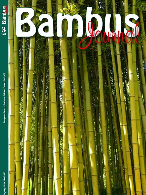 bambus journal