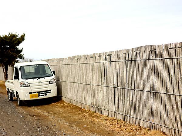 孟宗竹を使ったセンリョウ成育場「楽屋」