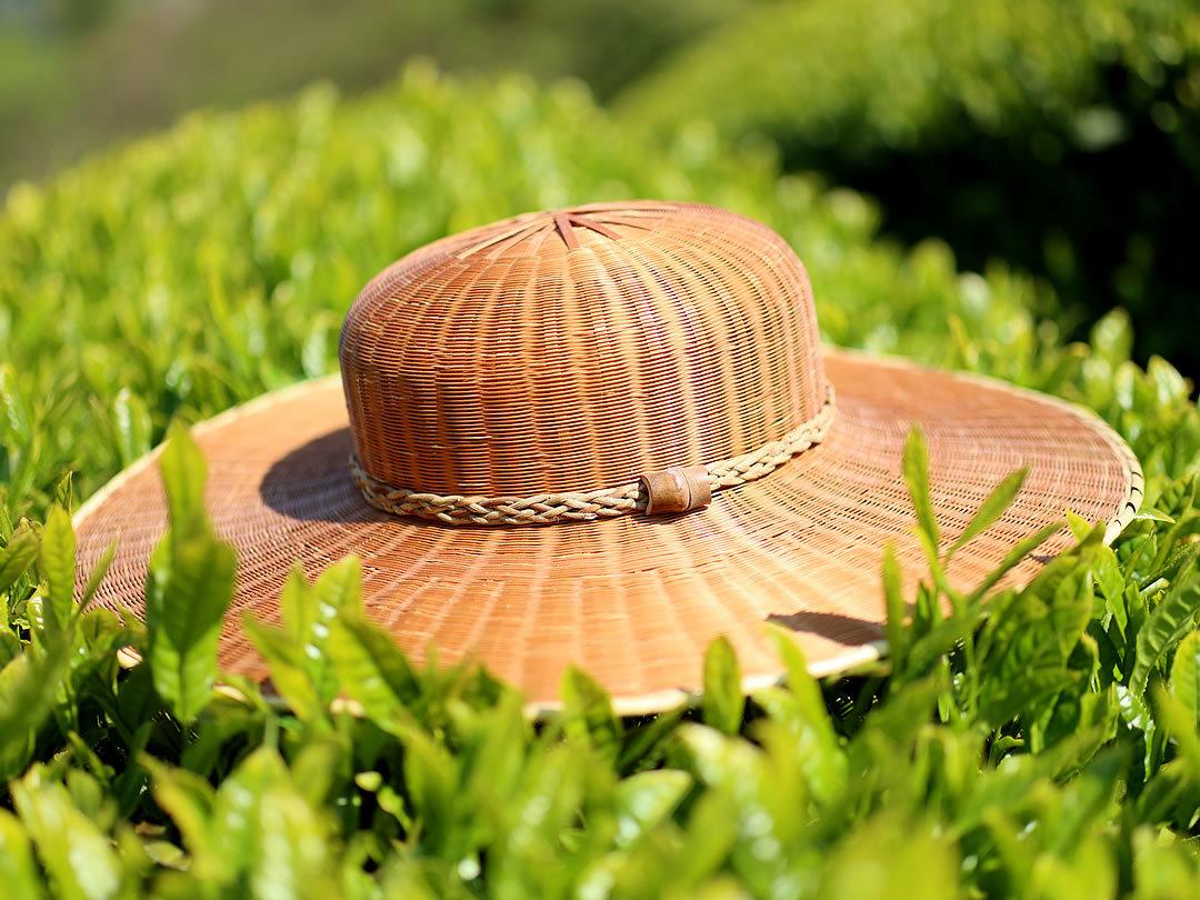 沢渡茶、竹帽子