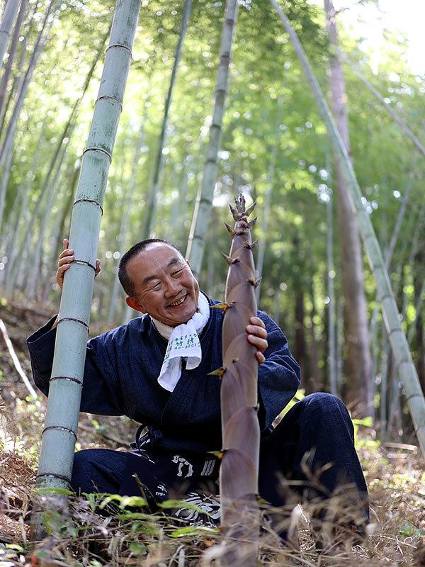 日本唯一の虎竹筍