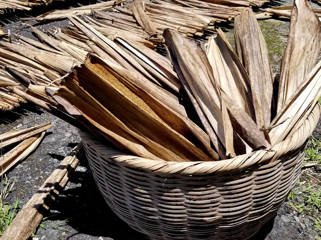国産竹皮草履用の竹皮