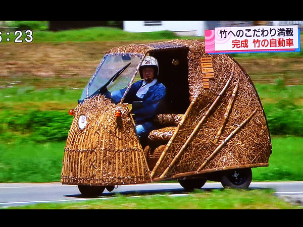 日本唯一虎竹自動車(Tiger Bamboo car)