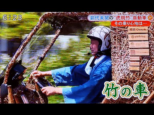 日本唯一の虎竹自動車jpg