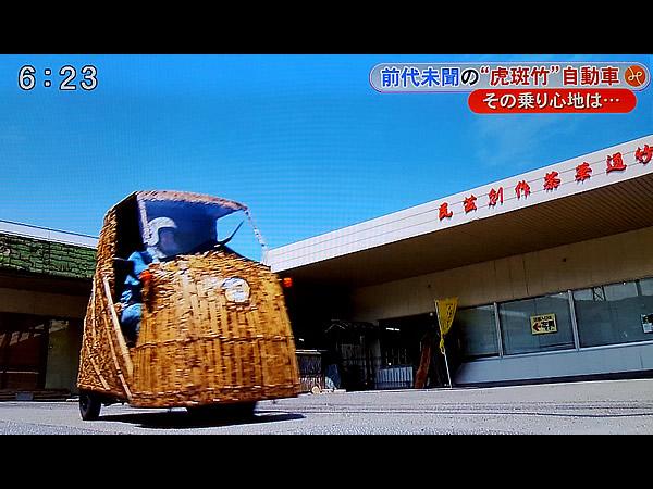 日本唯一の虎竹自動車
