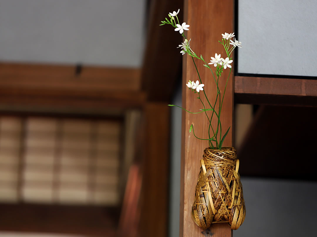 虎竹掛け花籠 蝉
