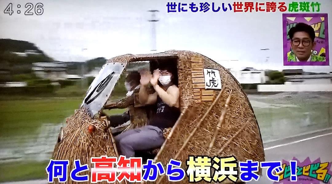 RKC高知放送「ビビっとビビる!!」、竹トラッカー
