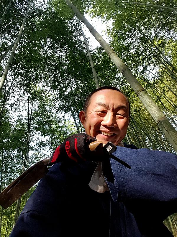 日本唯一の虎竹林、竹虎四代目(山岸義浩、YOSHIHIRO YAMAGISHI)