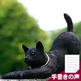 竹炭の日本猫(のび)