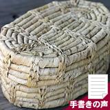 【復刻限定】竹皮弁当箱