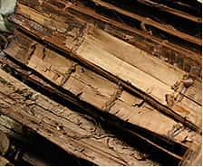 爆砕された竹はさらに細かく竹繊維に