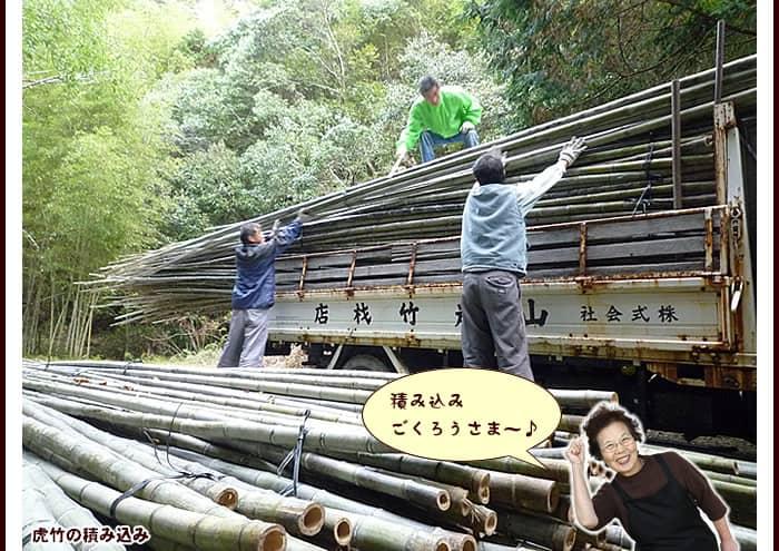 虎竹の積み込み