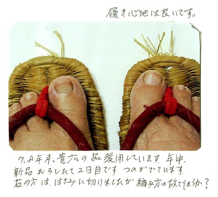 竹皮草履(ぞうり)の声