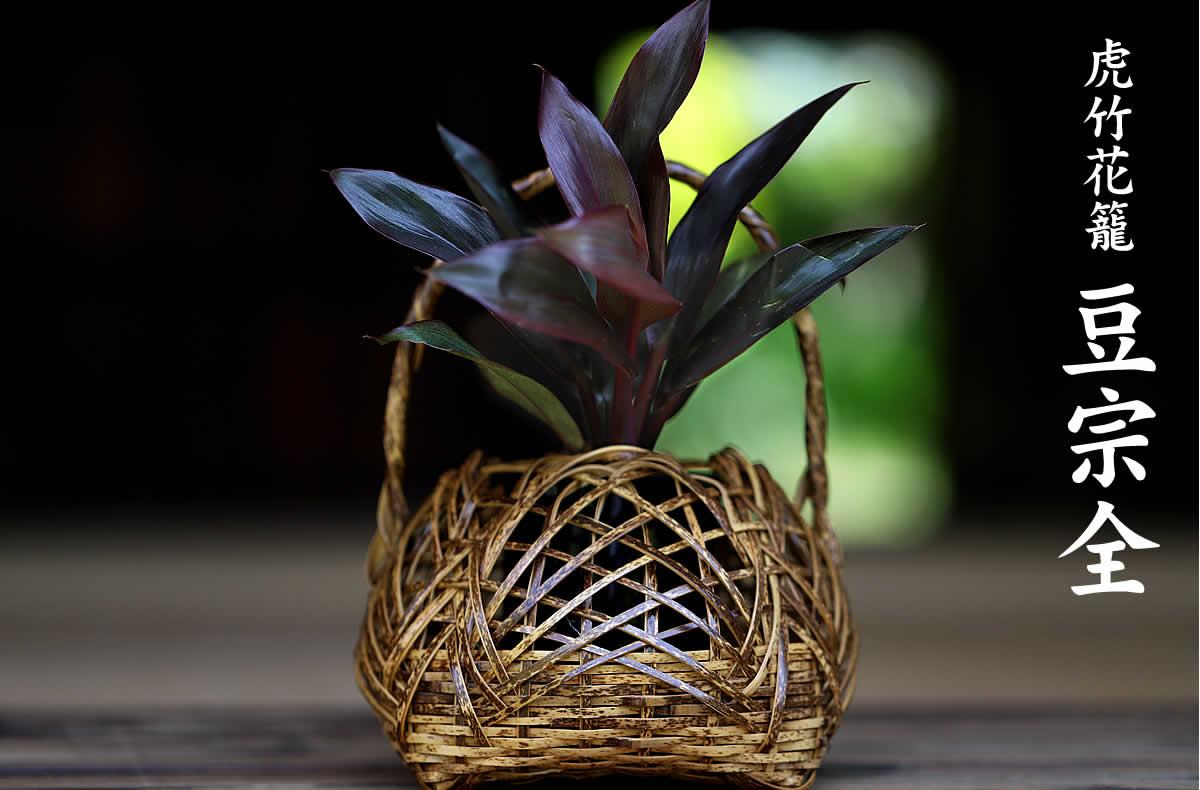小ぶりで可愛らしいサイズの虎竹花籠 豆宗全