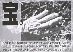 竹虎四代目年賀状 2000年