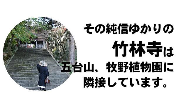 純信ゆかりの竹林寺