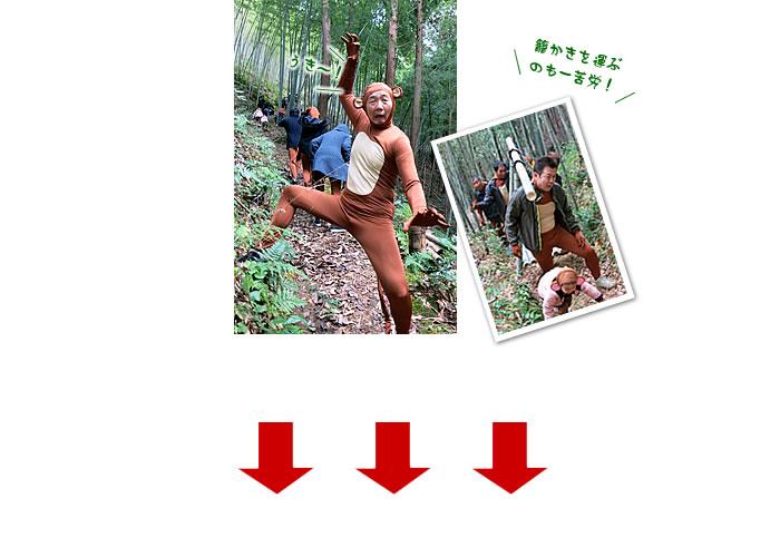 いざ、日本唯一の竹林へ!