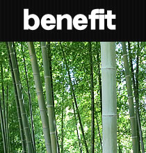 Bamboo charcoal benefit