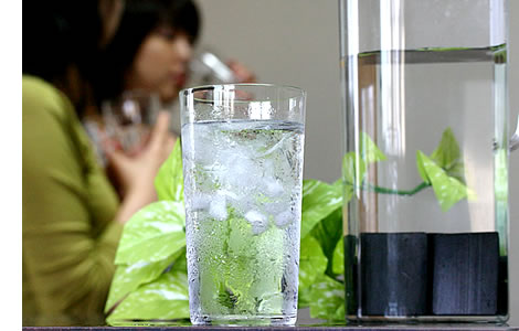Bamboo charcoal Water Purifier
