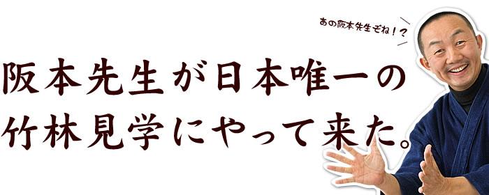 阪本先生が日本唯一の竹林見学にやって来た。