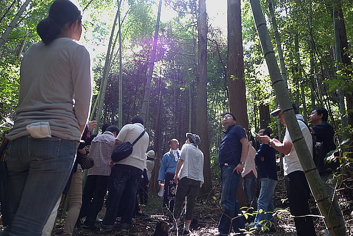 TOKIOの森,竹虎四代目(山岸義浩、YOSHIHIRO YAMAGISHI、TAKETORA)