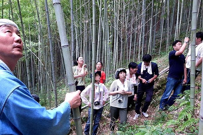 竹虎四代目(山岸義浩、YOSHIHIRO YAMAGISHI、TAKETORA),この道こそ、竹虎の出発地点。