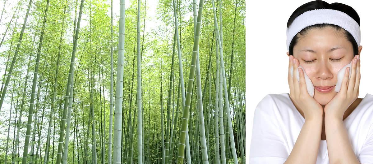 虎竹の里 竹炭石鹸