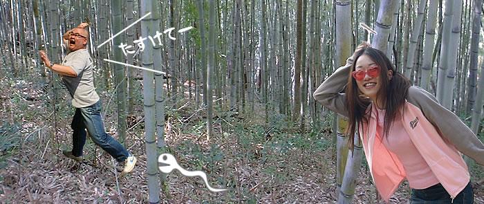 日本唯一の虎竹ながよ!