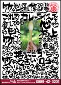 竹虎通信 2012年6月