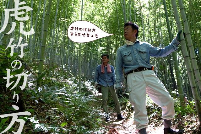 虎竹の切り方