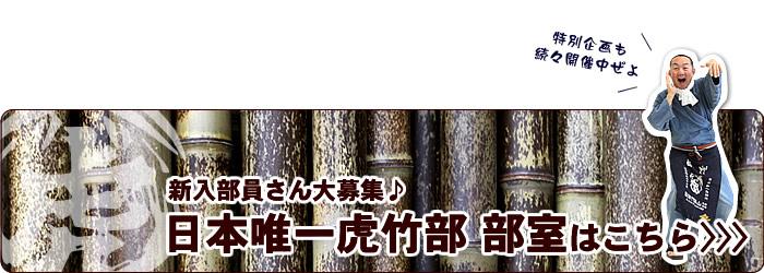 日本唯一虎竹部 部室はこちら>>>