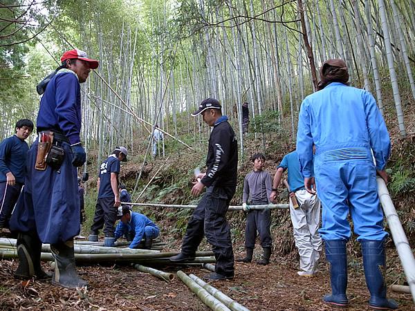 竹練り踊り用の竹