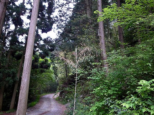 虎竹の里の結界