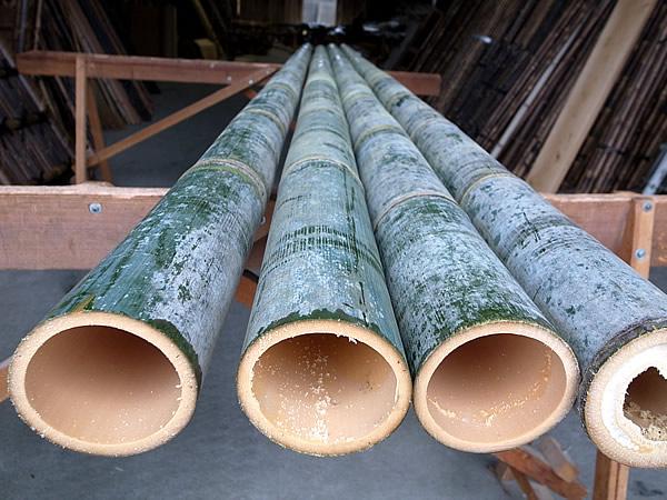 マスト用の竹