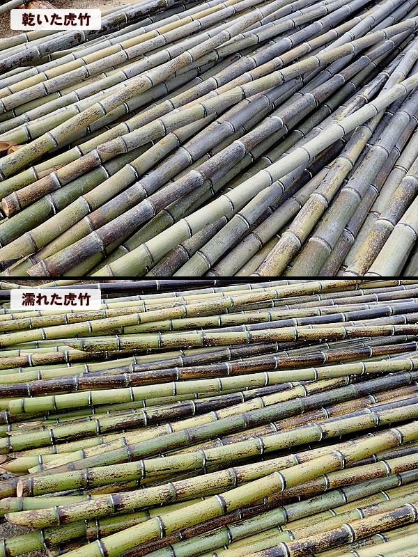 竹虎,須崎市,安和,竹,職人