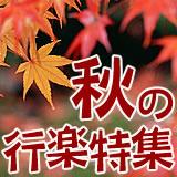 【お弁当グッズ】秋の行楽特集