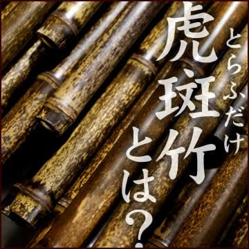 虎斑竹とは?