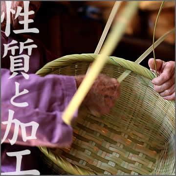 竹の性質と加工