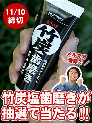 竹炭敷きパッドプレゼント
