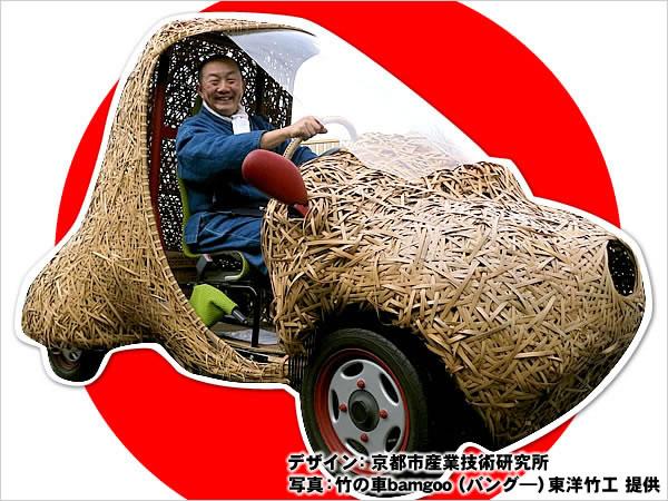 日本唯一の虎竹自動車プロジェクト