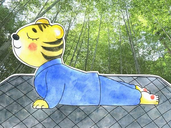 竹炭 敷きパッド 寝る前エクササイズ ストレッチ