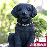 竹炭のラブラドールレトリバー(子犬)