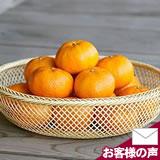 盛りかご(鉄鉢)